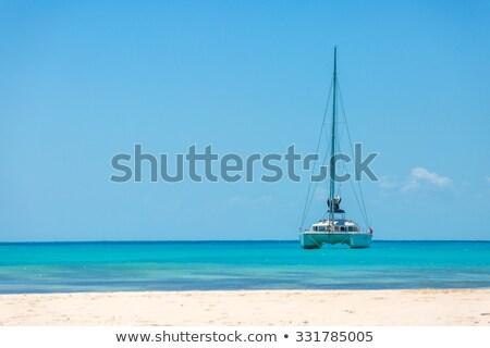 vitorlázik · trópusi · megnyugtató · vitorla · csónak · miami - stock fotó © mtilghma