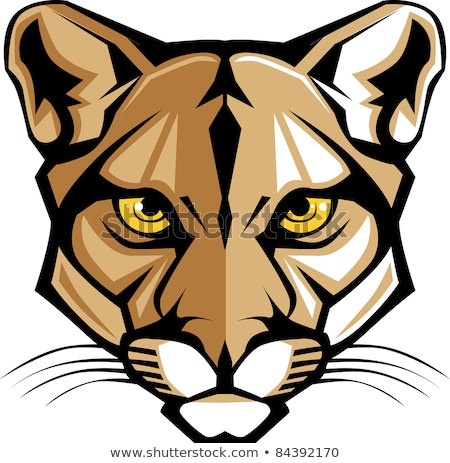 Cougar Mascot Head Vector Graphic stock photo © chromaco