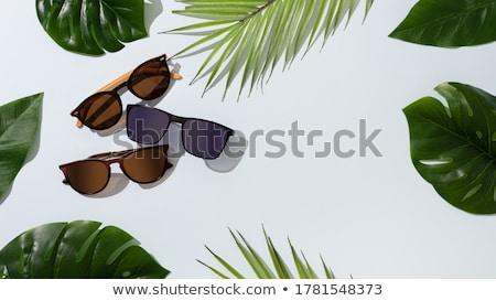 Moda güneş gözlüğü çift kahverengi beyaz Stok fotoğraf © restyler