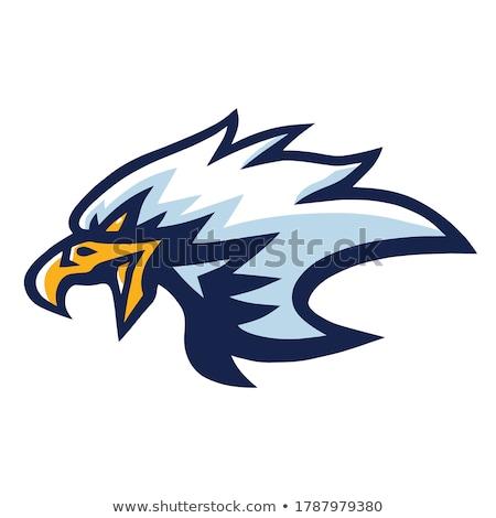 Stock foto: Mascot Head Of An Eagle Vector Illustration