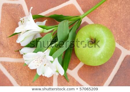 ユリ · リンゴ · 階 · 白 · 緑 · セラミック - ストックフォト © Bellastera