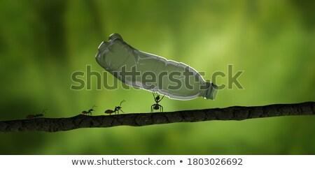 муравей группа Cartoon муравьев попытка атаковать Сток-фото © blamb