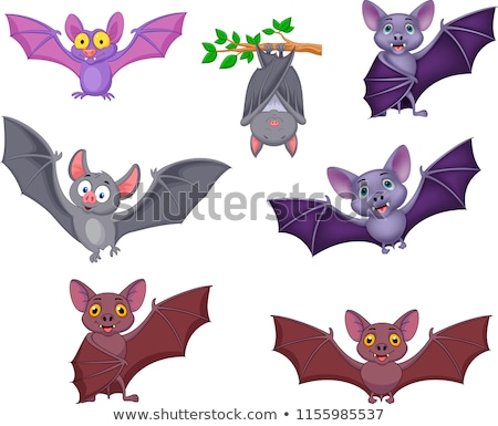Cartoon bat arte design Foto d'archivio © indiwarm