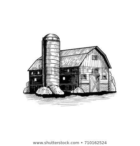 barn and silos stock photo © mikemcd