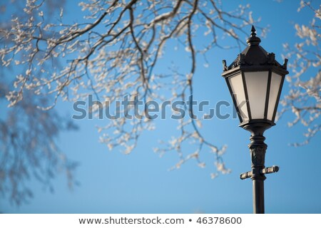 Lamp Post Covered in Snow Stock photo © saje