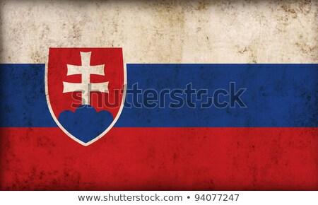 Slovakia retro flag Stock photo © RedKoala