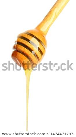 miele · legno · foto · isolato · bianco · alimentare - foto d'archivio © vlad_star