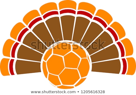 football · action · de · grâces · vacances · Turquie · cartoon · vecteur - photo stock © chromaco