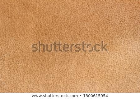 Сток-фото: оранжевый · кожа · текстуры · аннотация · корова