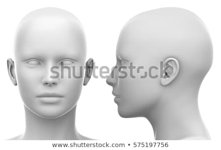 Human head anatomy stock photo © dagadu