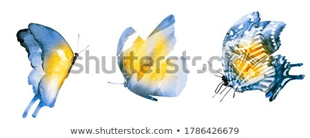 insectes · papillons · illustration · doodle - photo stock © angelp