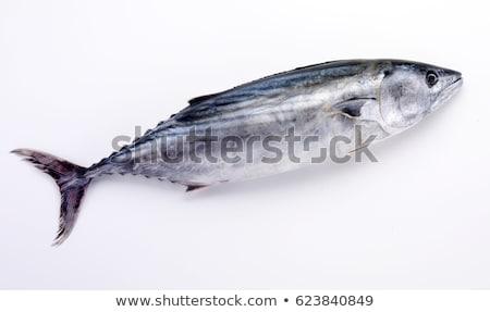 尾 · 魚 · 孤立した · 白 · 食品 · オレンジ - ストックフォト © digitalr