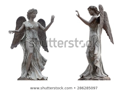statue of woman angel stock photo © kyolshin