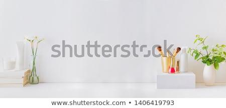 Kadın mobilya kadın ikon sünger Stok fotoğraf © zzve