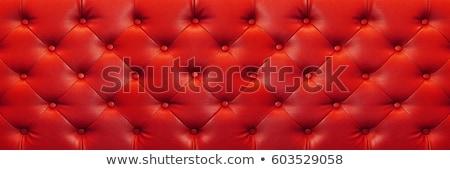 Puha ráncos piros bőr textúra copy space Stock fotó © photocreo