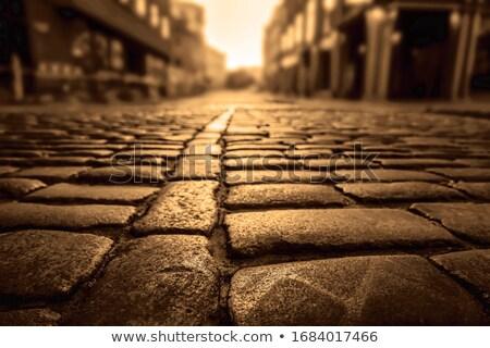 Taş kaldırım park yol sokak model Stok fotoğraf © RedDaxLuma