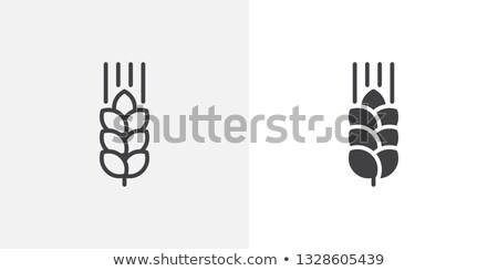 Buğday kulaklar versiyon natürmort beyaz ekmek ışık Stok fotoğraf © Lynx_aqua