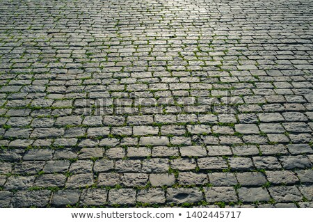 color cobbled road as background Stock photo © mycola