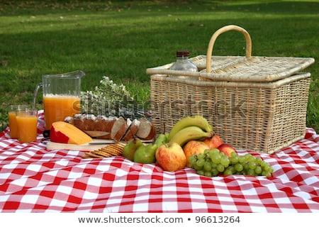 vruchten · biscuits · picknick · vergadering · picknickdeken - stockfoto © epstock