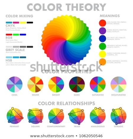 spektrum · látható · fény · szín · kerék · terv - stock fotó © elenapro