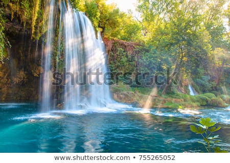 Cachoeiras Turquia belo córrego água árvore Foto stock © rglinsky77