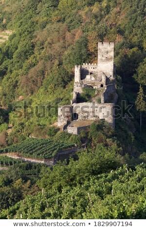 замок · снизить · Австрия · архитектура · Европа - Сток-фото © lianem