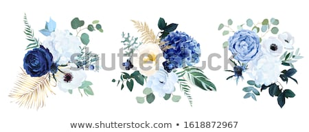 Blau Blumen Salbei Sommer Biene Pflanzen Stock foto © Ustofre9