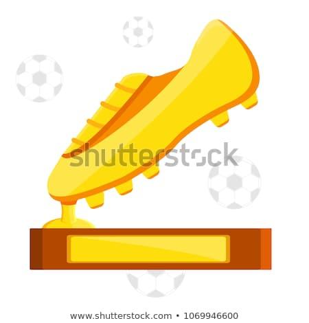 golden shoe Stock photo © Hochwander