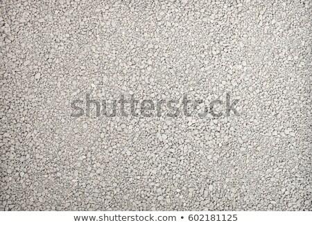 kat · zand · witte · natrium · textuur - stockfoto © njnightsky
