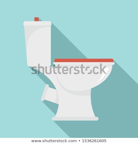 banheiro · isolado · limpeza · limpar · madeira · trabalhar - foto stock © konturvid