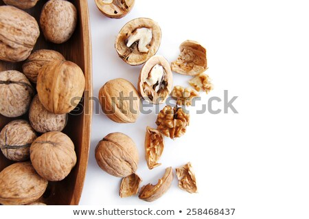 crude walnut on white background stock photo © bsani