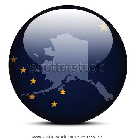 Pokaż banderą przycisk USA Alaska wektora Zdjęcia stock © Istanbul2009