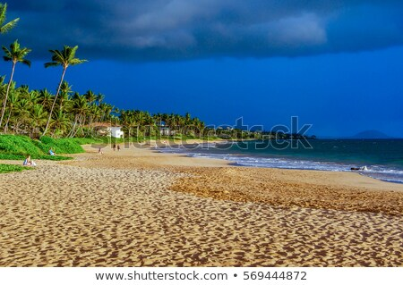 Storm clouds rising in tropical sand beach Stock photo © Juhku