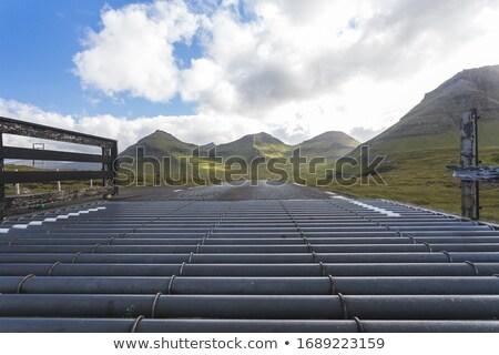 Cattle grid on the Faroe Islands Stock photo © Arrxxx
