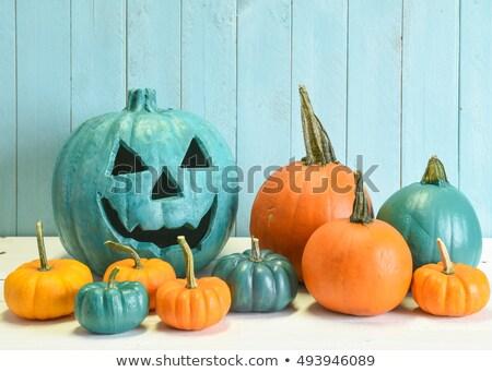 halloween · truc · meisjes · kostuums · leuk - stockfoto © x7vector