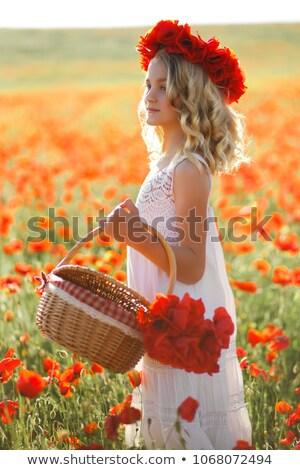 Güzel kız çelenk çiçekler portre esmer kız Stok fotoğraf © Aikon