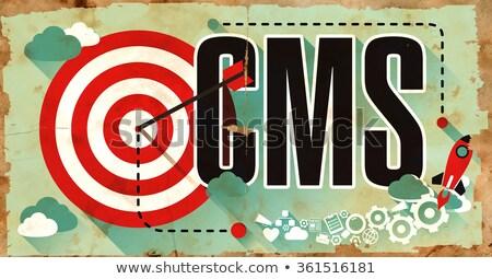 Cms anunciante grunge diseno contenido gestión Foto stock © tashatuvango