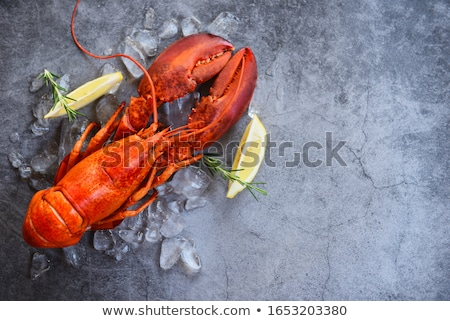 lobster Stock photo © ssuaphoto