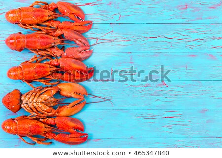 Colorful red lobster border on blue wood Stock photo © ozgur