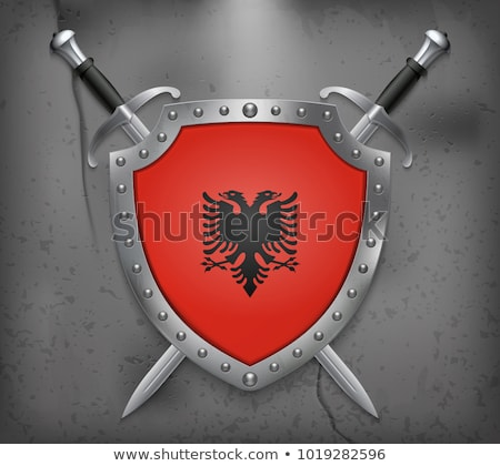 West 2 Europe Shield Flags stock photo © Darkves