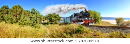 old black steam locomotive in germany Stock photo © compuinfoto