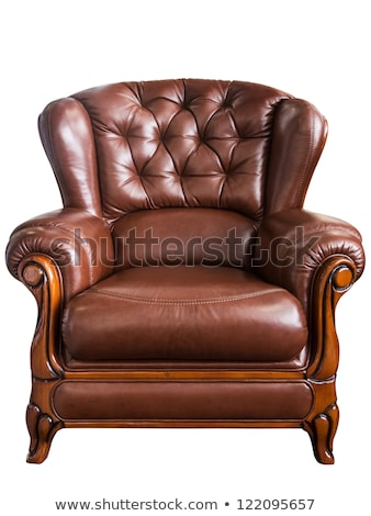 leather arm chair isolated on white background stock photo © elnur