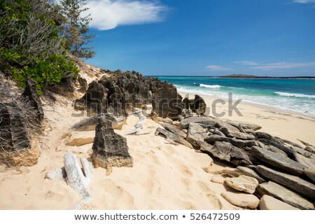 paradis · sable · plage · Madagascar · indian · océan - photo stock © artush