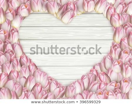 tulip heart frame bouquet eps 10 stock photo © beholdereye