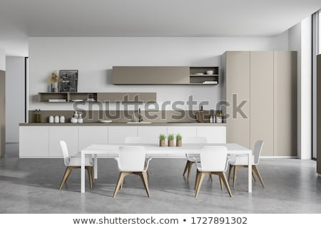 Modern style kitchen Stock photo © bezikus