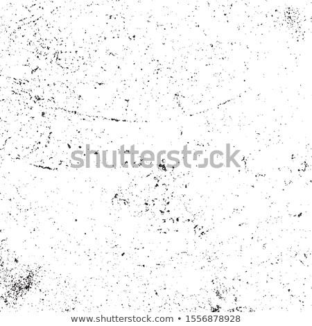 Grunge splatter ontwerp illustratie Stockfoto © SArts