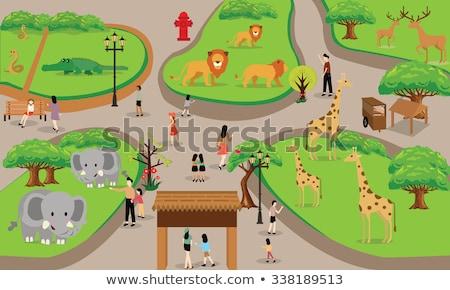 Zoo scena verde campo illustrazione cielo Foto d'archivio © bluering
