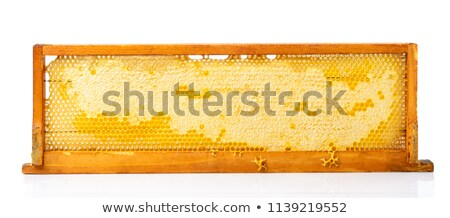 Beehive Honeycomb Frame Stock photo © Lightsource