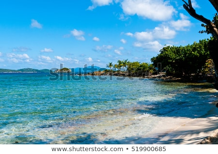 Sapphire Beach on St Thomas, USVI stock photo © chrisukphoto