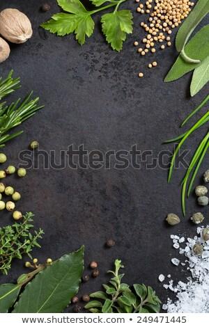 Various spices arranged in tray Stock photo © wavebreak_media